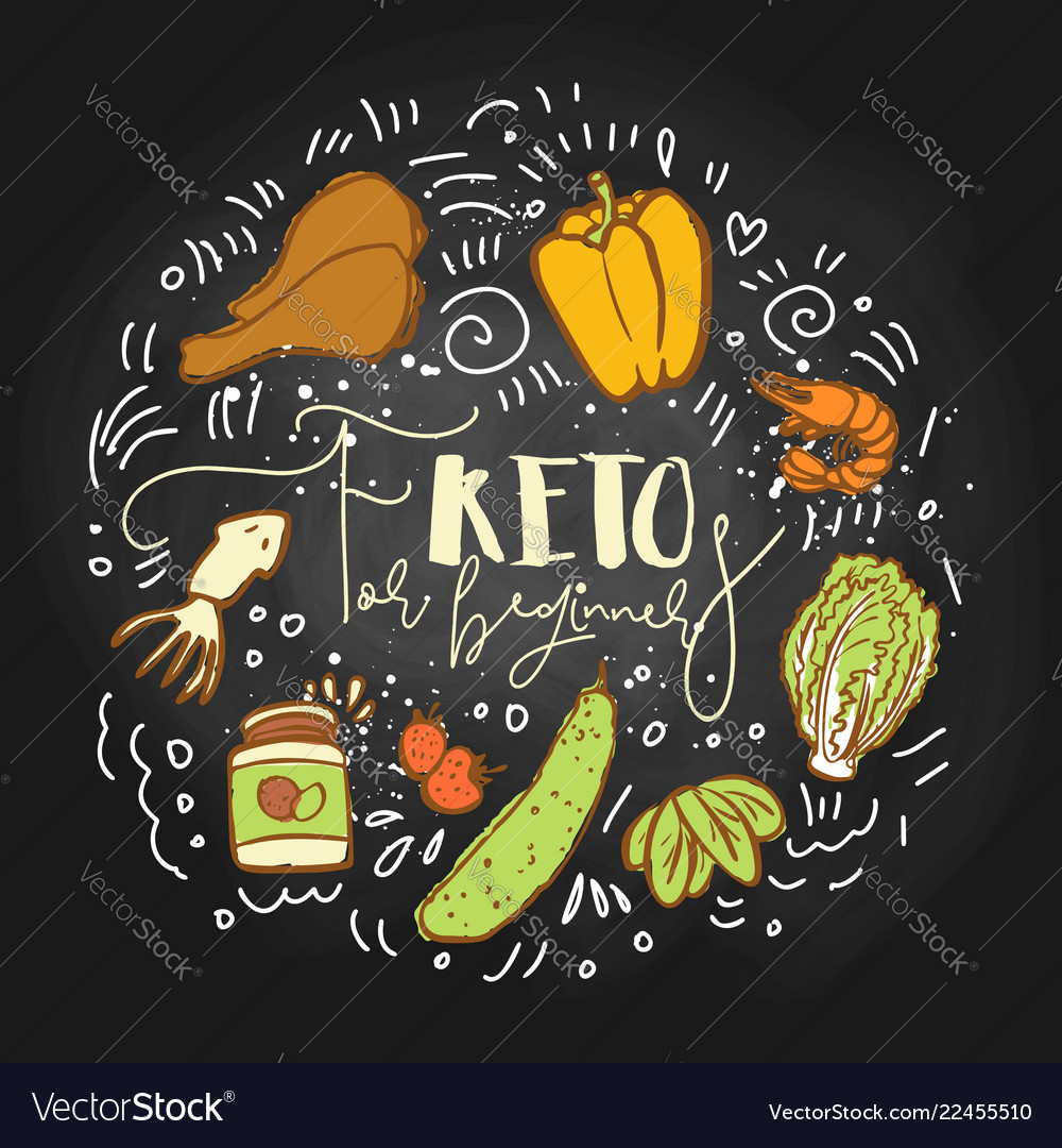 Keto for beginners food sketch vector image