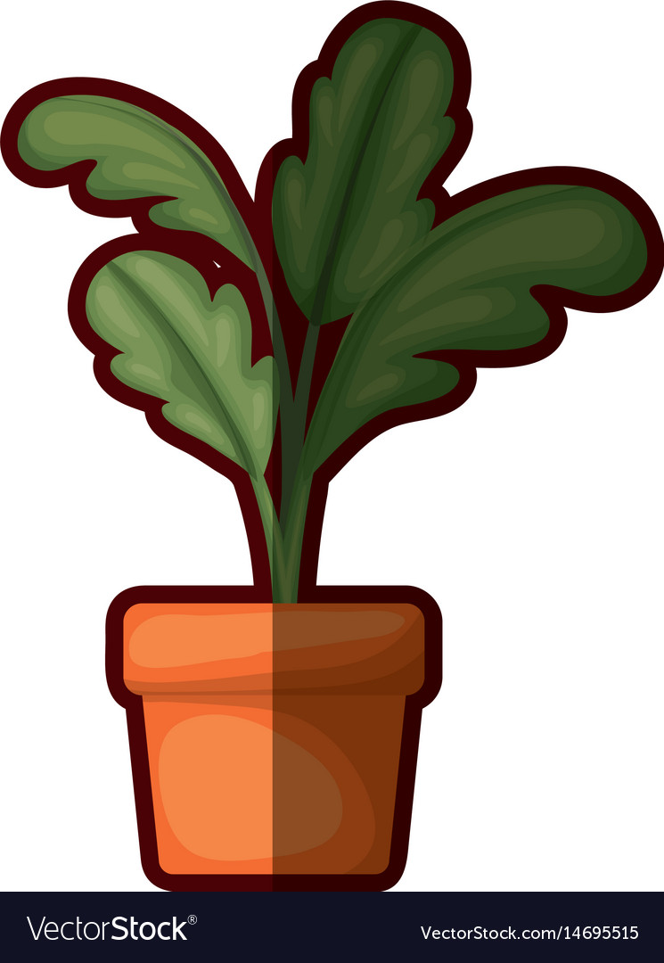 White background with beet plant in flower pot vector image