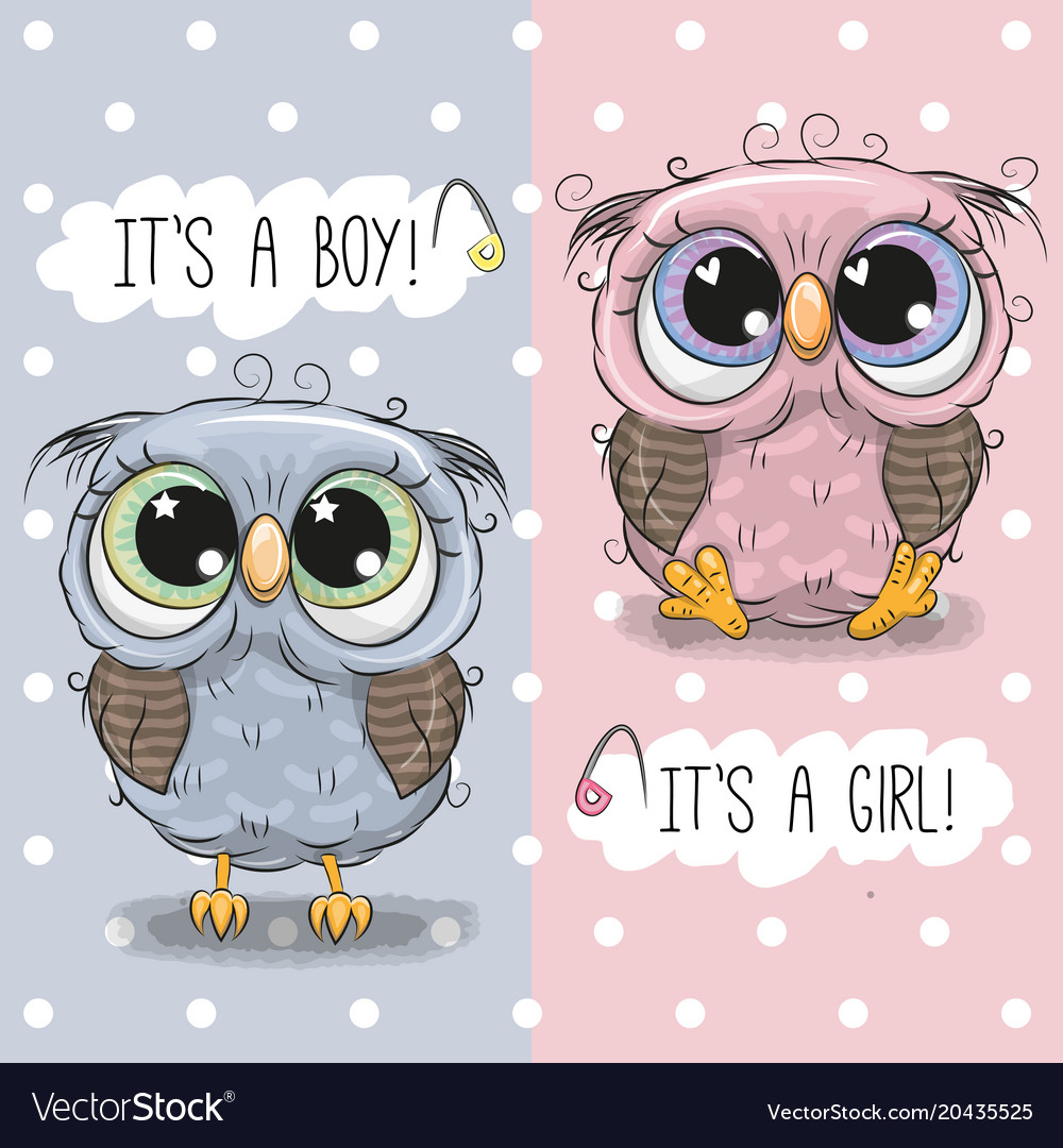 Baby Shower Greeting Card With Cute Owls Vector Image