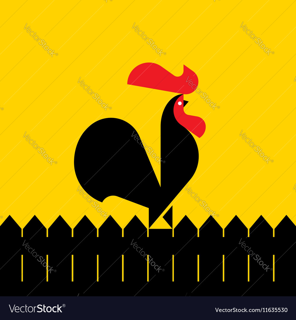 Black rooster on a fence