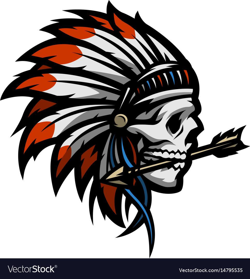 Skull an indian warrior