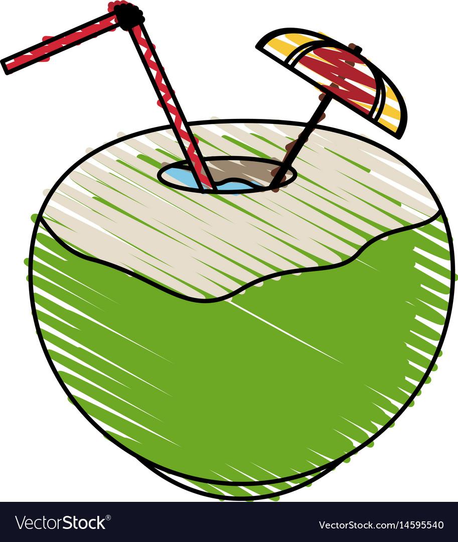 Color crayon stripe coconut cocktail drink vector image