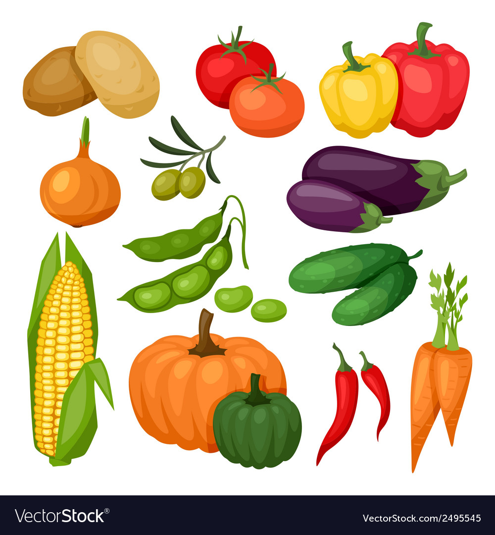 Icon set of fresh ripe stylized vegetables vector image