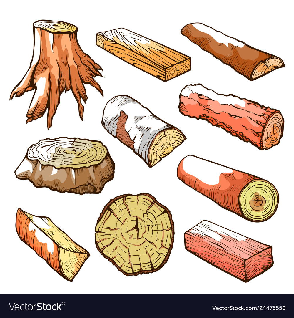 Wood logs and stubs set natural wooden elements