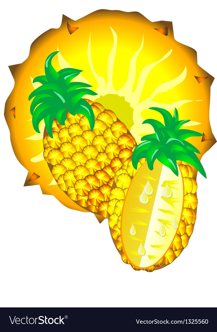 Sliced pineapple vector image