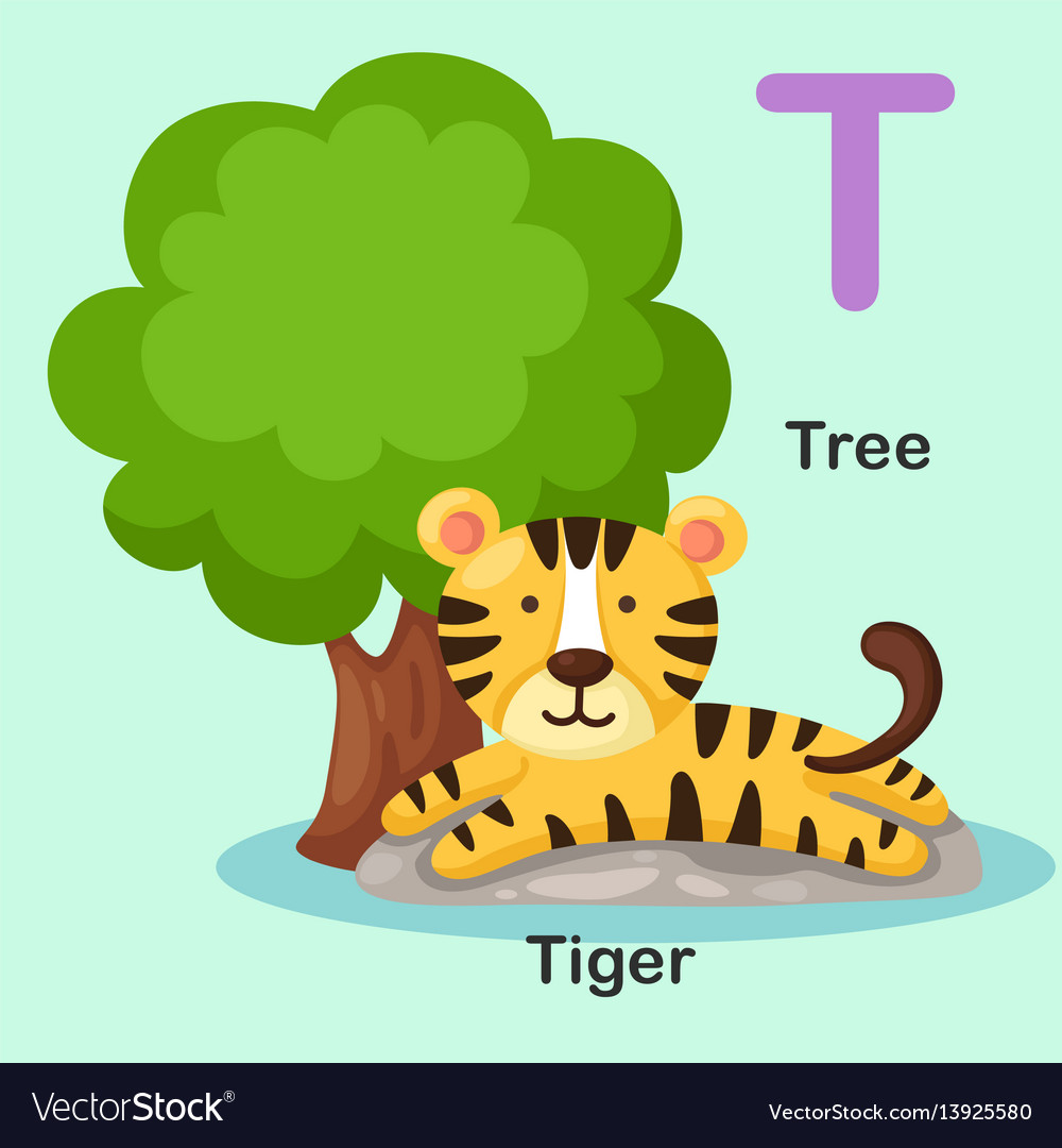 Isolated Animal Alphabet Letter T Tree Tiger Vector Image