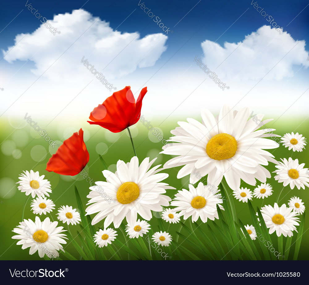 Nature background with beautiful flowers and blue vector image izmirmasajfo
