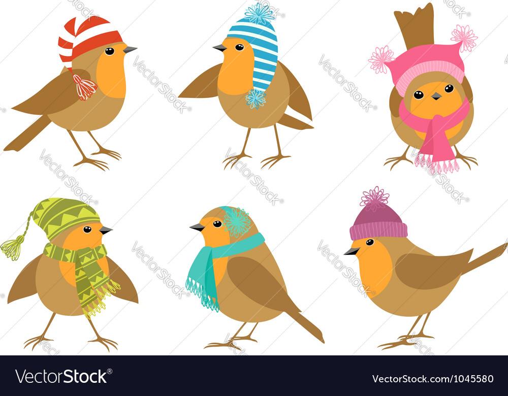 Winter Robins vector image