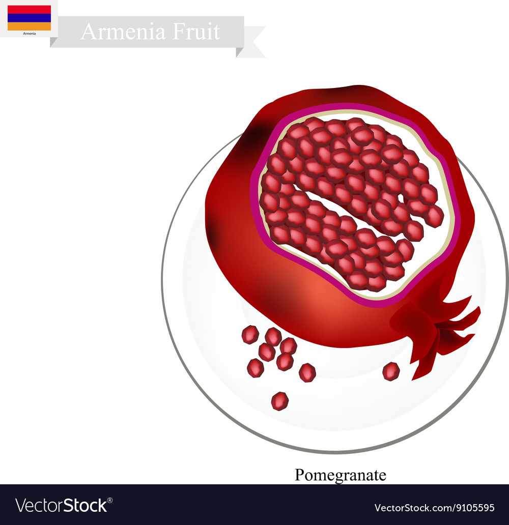 Ripe Pomegranate A Popular Fruit In Armenian Vector Image