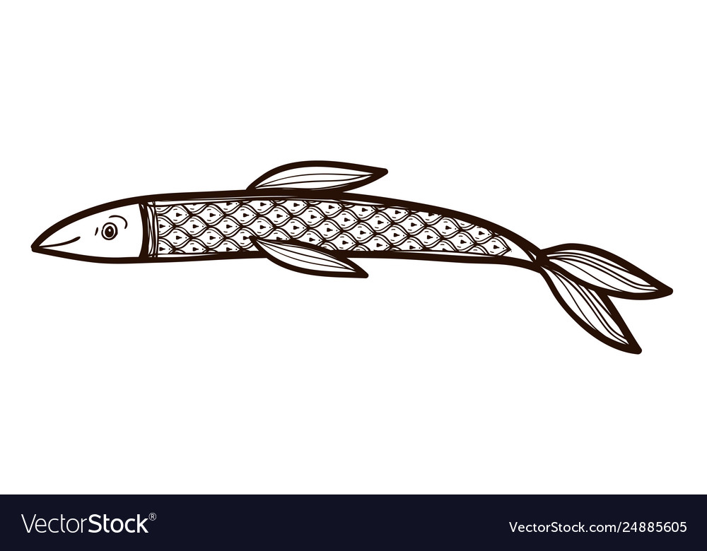 Fish isolated coloring book