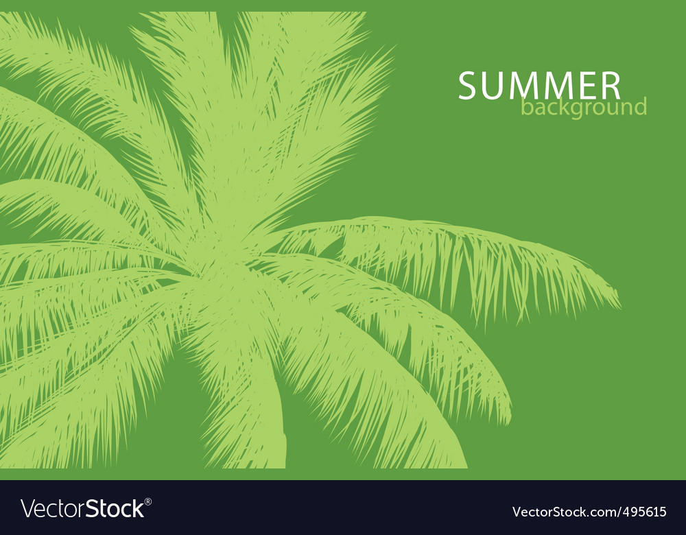 Tropical palm vector