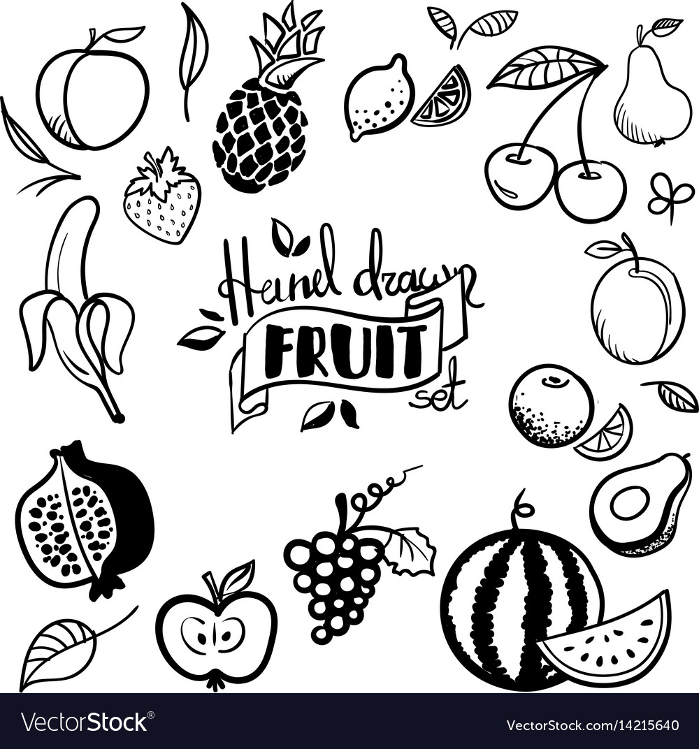 Hand drawn fruits set cherry avocado orange