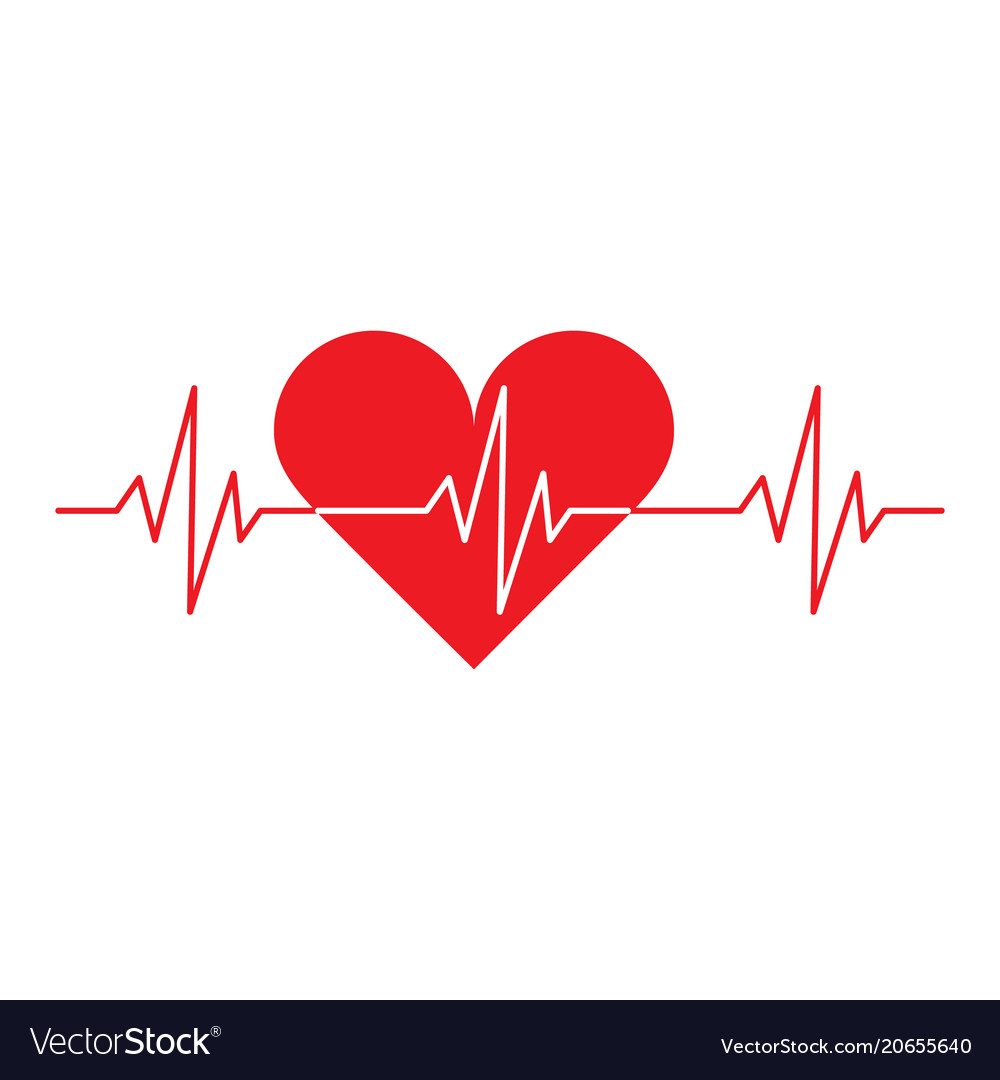 Heart cardio vector image