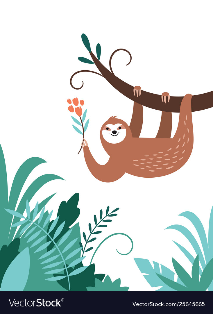 Cute adorable sloth hanging on branch tree