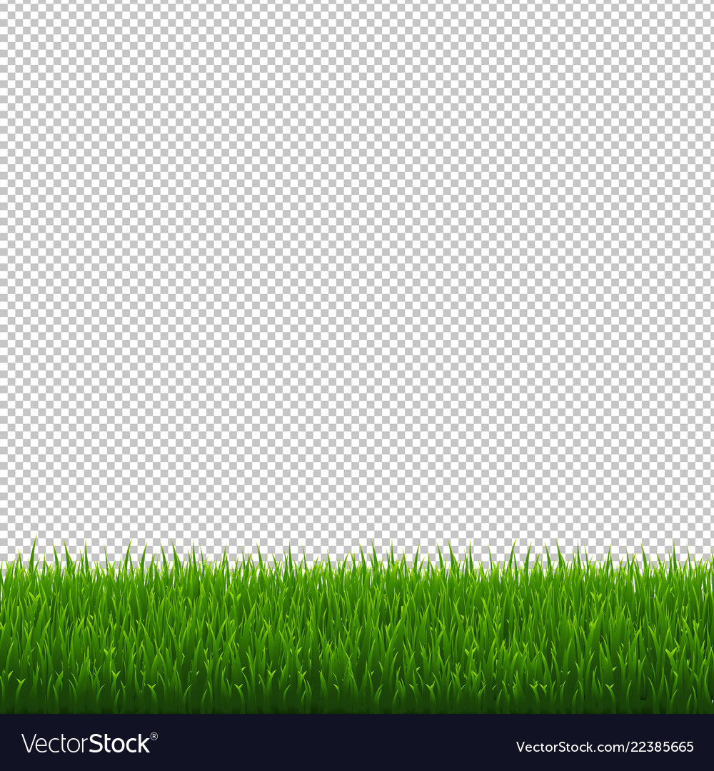 grass border no background golf green grass border transparent background vector image