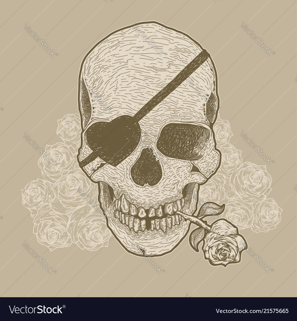 Hand drawn skull with rose