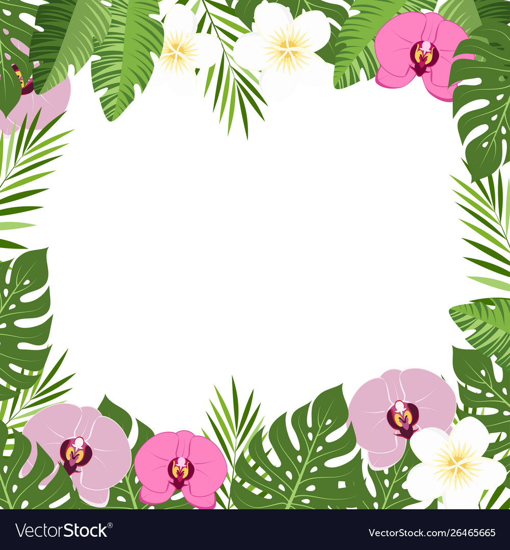 Tropical leaves and flowers orchid summer frame