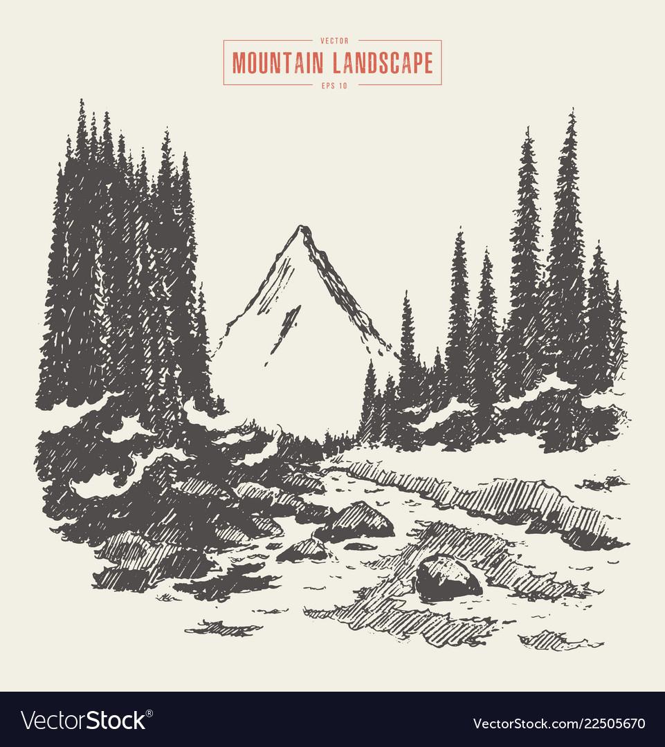 Mountains fir forest river hand drawn