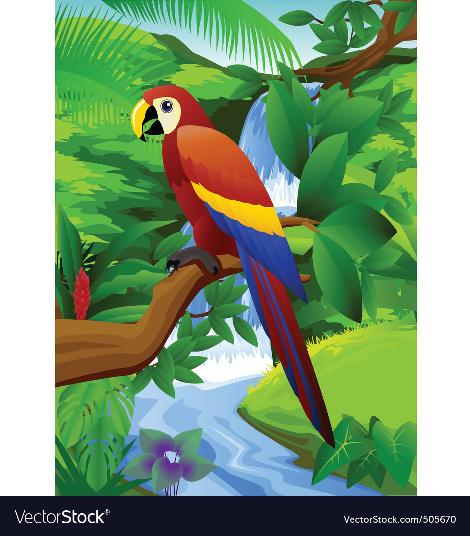 Parrot and waterfall