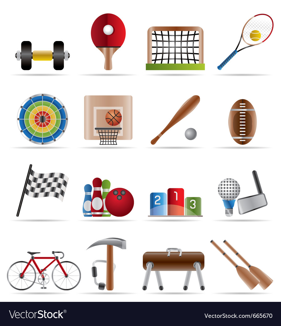 Sports gear and tools vector image