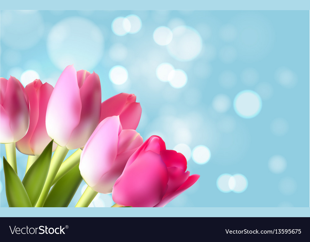 Spring and summer flower natural background