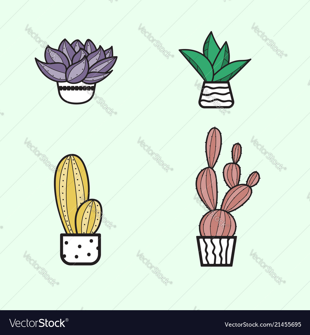 Cute hand hand draw cactus and succulent doodle