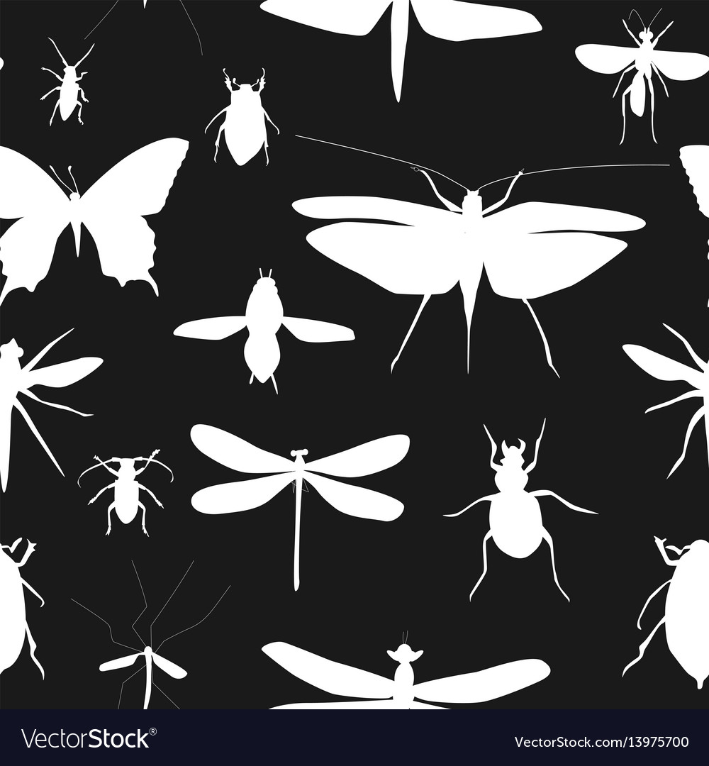 Silhouettes set beetles dragonflies and
