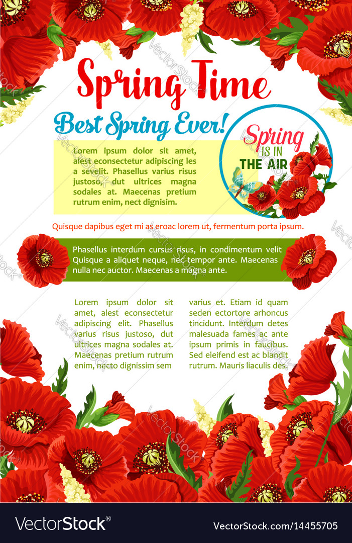 Spring season flower greeting poster template vector image