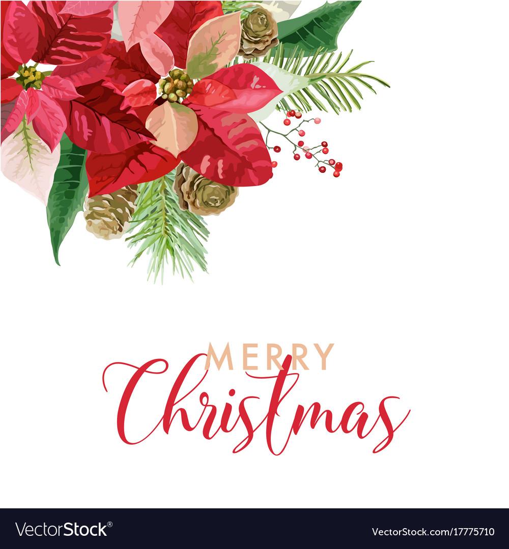 Christmas winter poinsettia flowers card