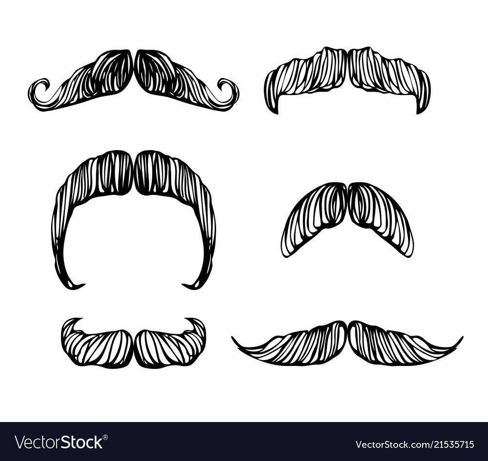 Hand drawn black and white mustache set
