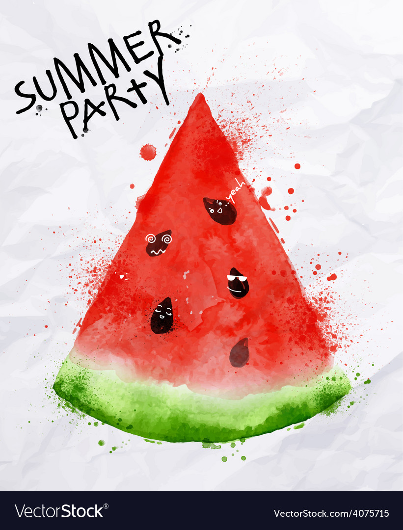 Poster summer party watermelon vector image