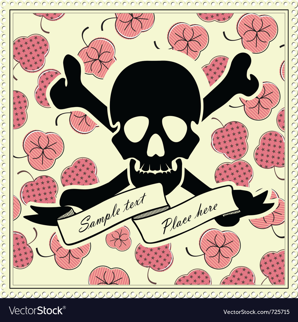 Skull and color frame vector image