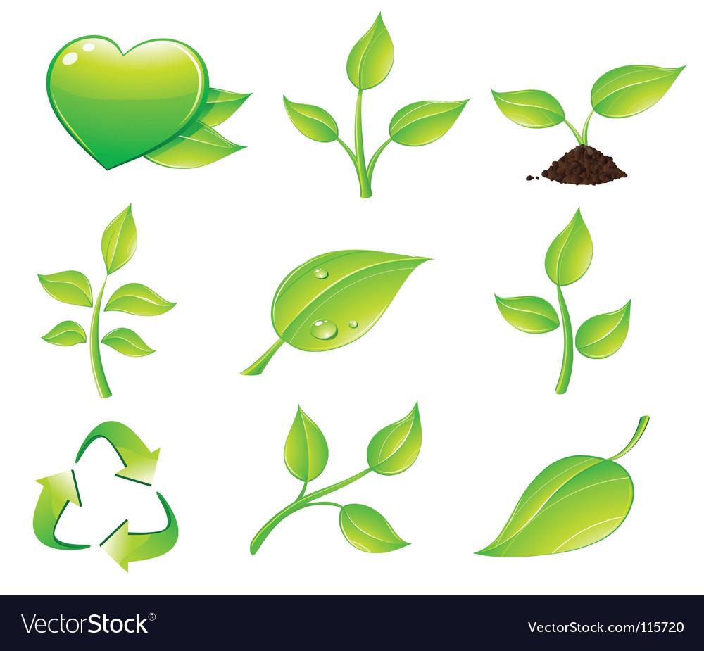 Floral icon set vector image