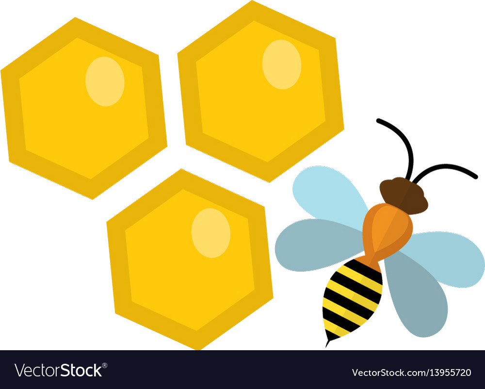 Honeycomb and bee icon flat style isolated on