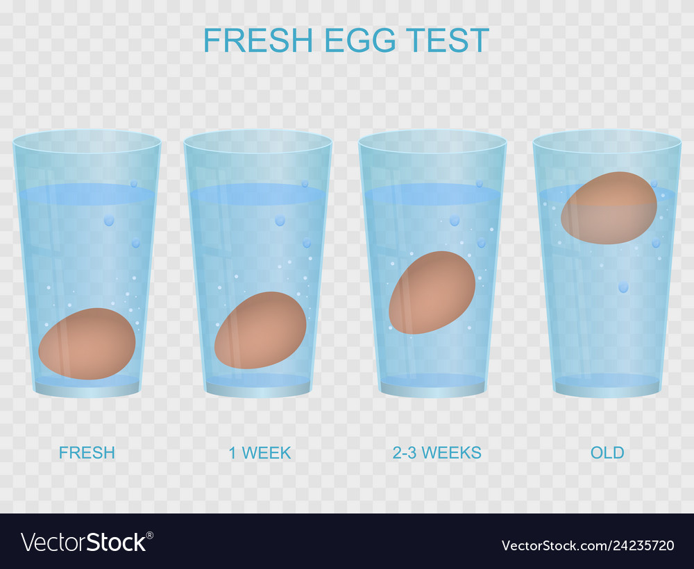 Realistic 3d detailed fresh egg test concept card