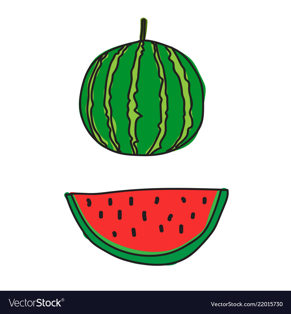 Draw watermelon icon vector image