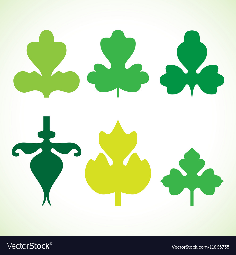 Decorative green leaves pattern set isolated