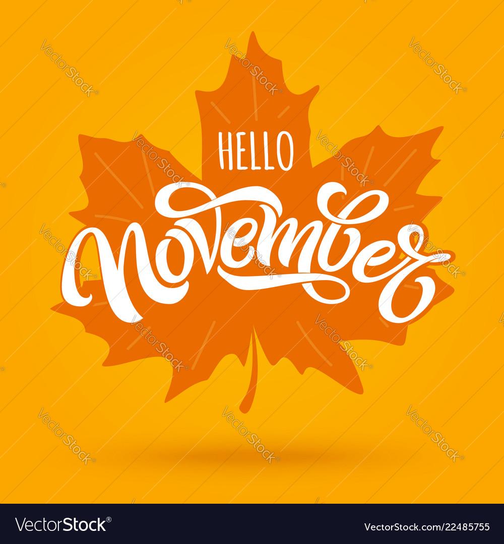 hello november modern brush calligraphy with vector image