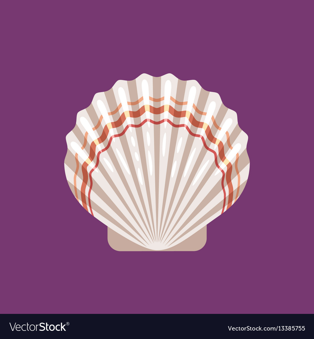 Seashell scallop flat icon vector image