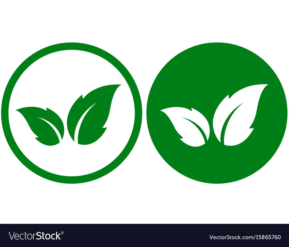 Green icon with leaf