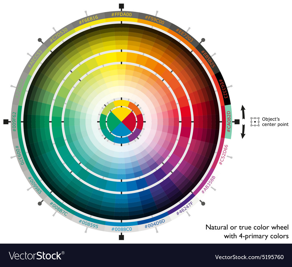 Natural or true color wheel with 4-primary colors vector image