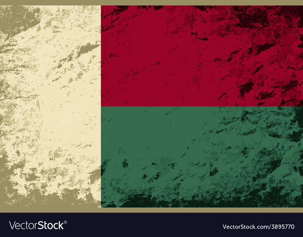 Madagascar flag Grunge background vector image