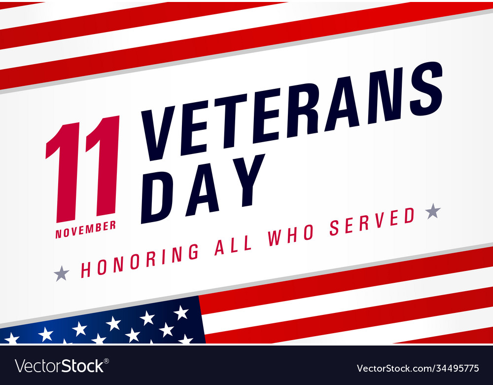 11 november veterans day usa honoring all who