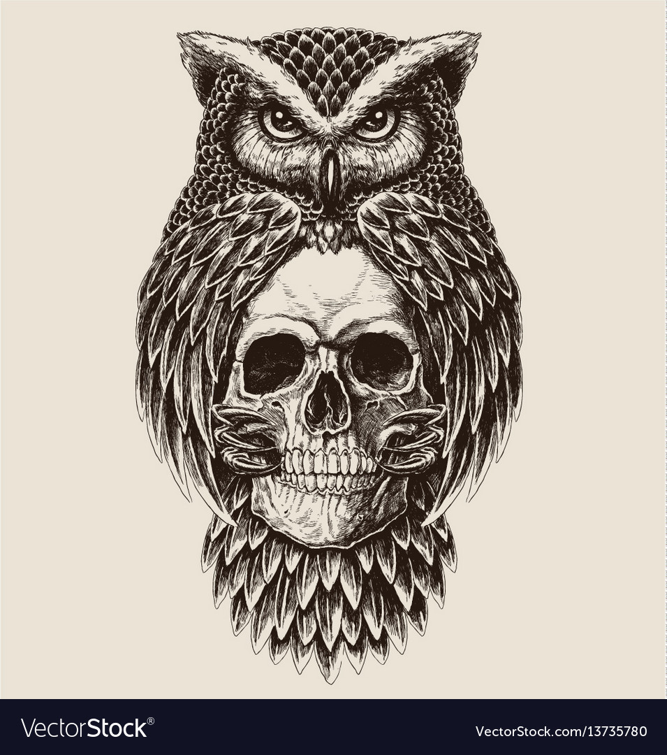 Elaborate drawing owl holding skull