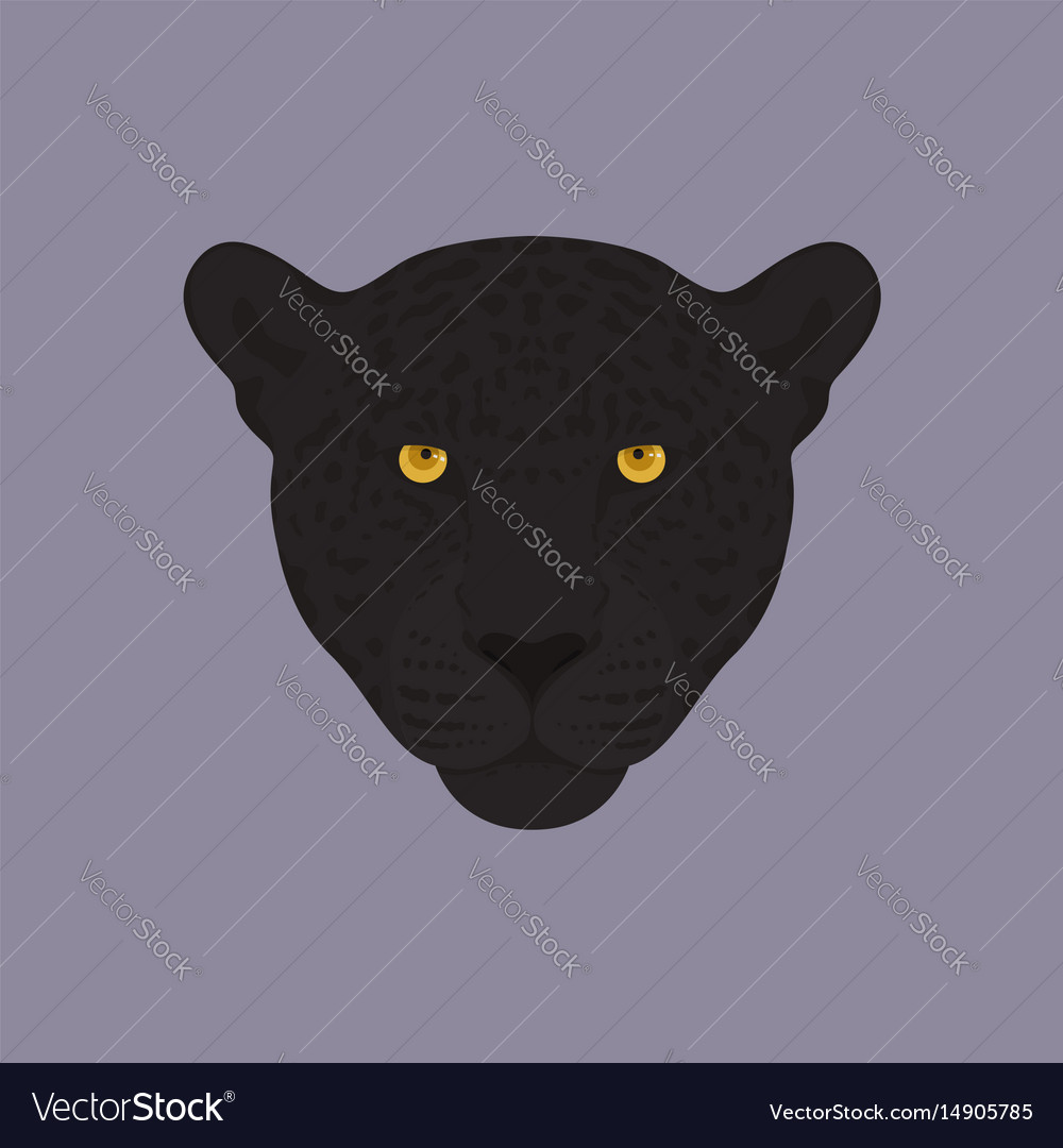 Head of a black panther with orange eyes vector image