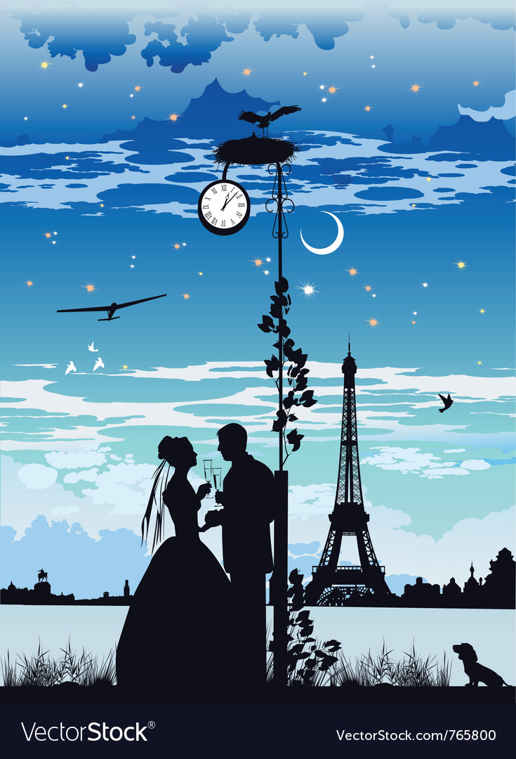 Bride and groom on the backdrop of the castle vector image