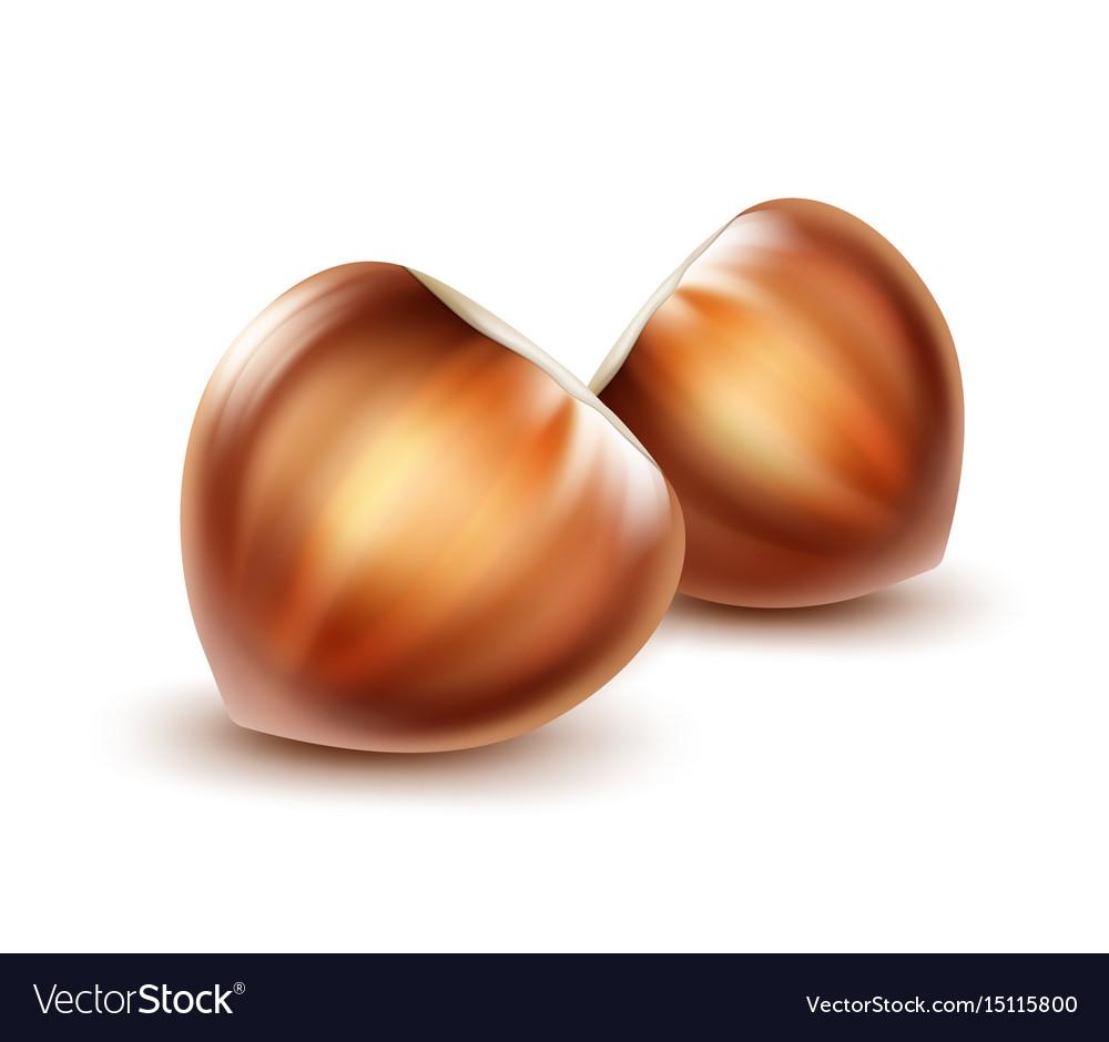Two unpeeled hazelnuts
