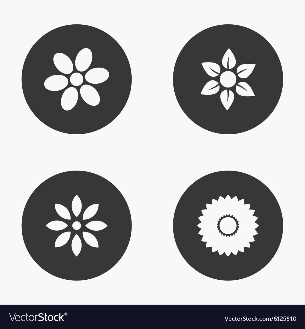 Modern flower icons set vector image