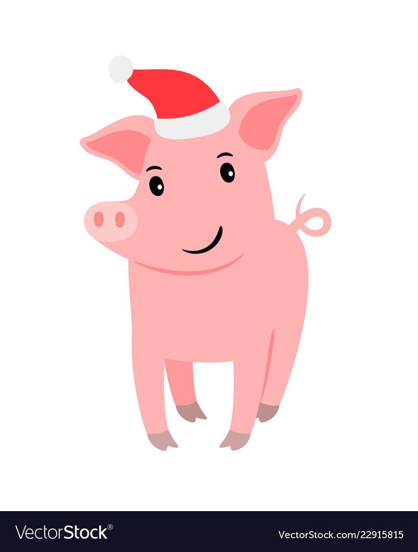 Cute pig in santa hat