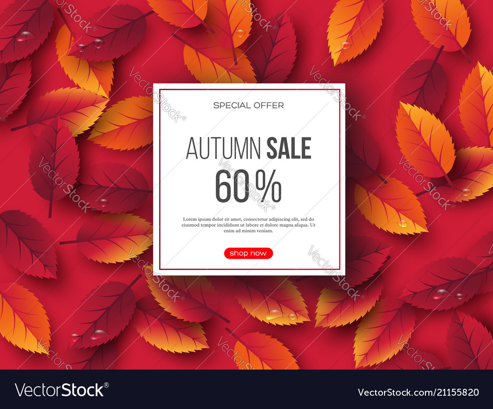 Autumn sale banner with 3d leaves and water drops